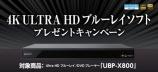 4K ULTRA HD ブルーレイソフト プレゼントキャンペーン始まりました!
