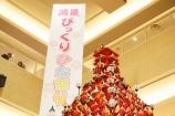 日本一高いひな壇『鴻巣びっくりひな祭り2018』に行ってきました。